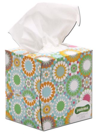 Paloma 60 Cosmetic 3 Ply Tissues